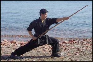 Toronto Mississauga Martial Arts Weapons Private LessonsSuccess
